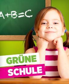 Gruene-Schule11